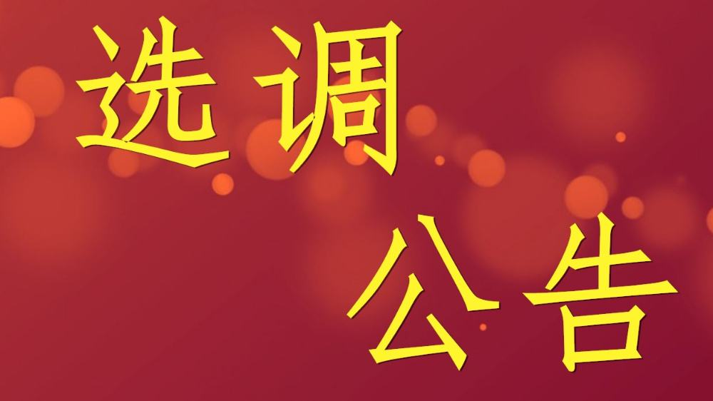【招聘201人】2019年赣州兴国县中小学教师考试选调公告